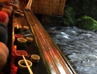 暑がりさん必見!この夏は京都で涼しく過ごそう!
